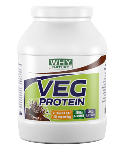 PROTEINE VEGAN WHY SPORT
